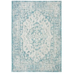 Nataly Blue Indoor/Outdoor Area Rug