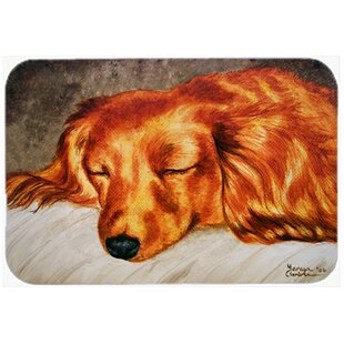 Longhaired Dachshund Kitchen/Bath Mat By Caroline's Treasures
