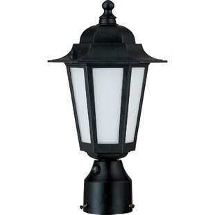 Alcott Hill Mayer 1-Light Lantern Head
