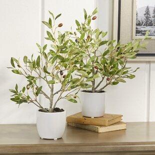 Olive Silk Desk Top Plant In Pot Set Of 2
