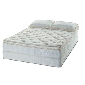 Essence Water Mattress Set by American National Manufacturing