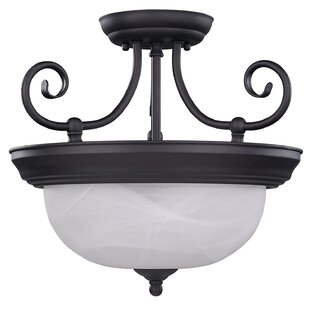 Julianna 2-Light Semi-Flush Mount by Canarm