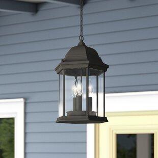 Castellanos 3-Light Outdoor Hanging Lantern & Outdoor Hanging Lights Youu0027ll Love | Wayfair