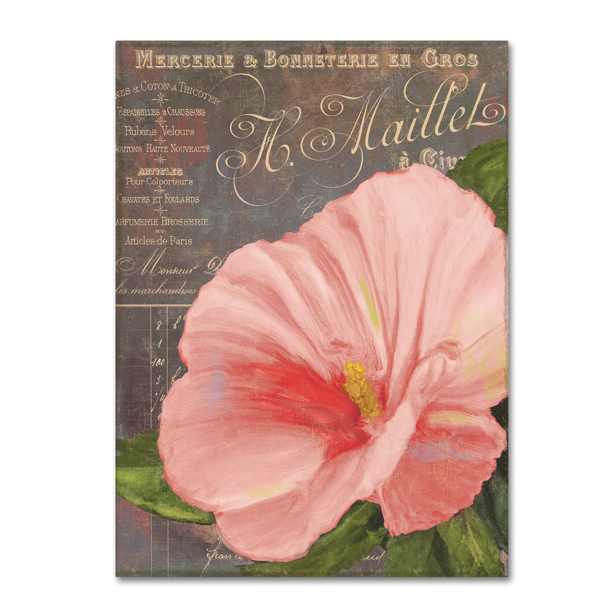 Trademark Art Peach Hibiscus By Colour Bakery Graphic Art On