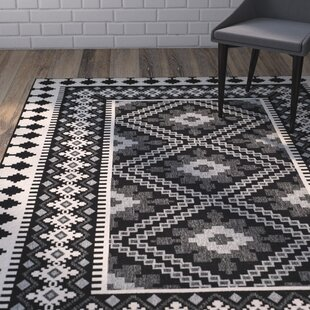 Black Rugs You Ll Love In 2019 Wayfair