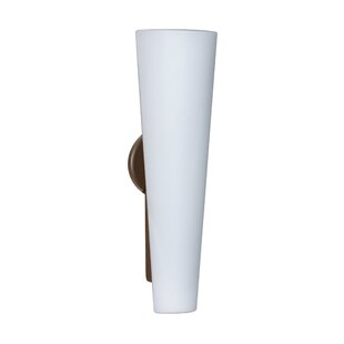 Orren Ellis Hooper 3-Light Opal Matte Outdoor Sconce
