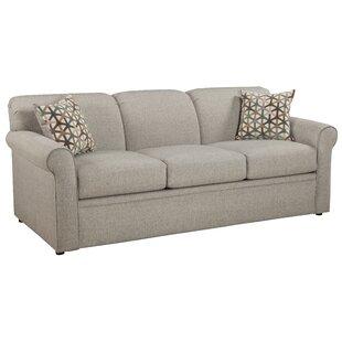 Cooldreamzzz Sleeper Sofa