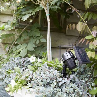 Krystina Garden Intelligent 1 Light LED Spot Light Image