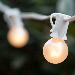 50 ft. 50-Light Globe String Light by Wintergreen Lighting