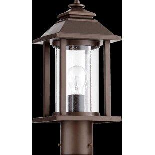 Charlton Home Eastbourne 1-Light Lantern Head