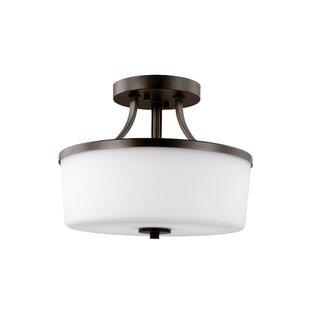 Darby Home Co Burnley 2-Light Semi Flush Mount