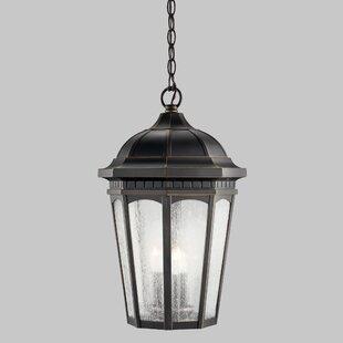 Darby Home Co Flinders 1-Light Outdoor Hanging Lantern