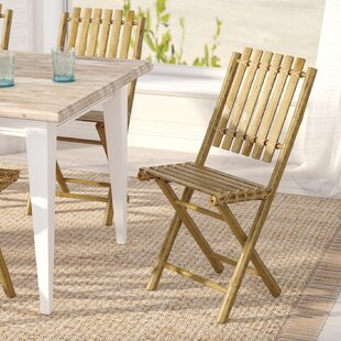 Josephine Folding Patio Dining Chair (Set of 2)