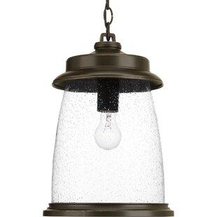 Breakwater Bay Millard 1-Light Outdoor Hanging Lantern