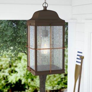 Beachcrest Home Craig 1-Light Outdoor Hanging Lantern
