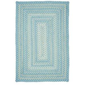 Blue Indoor/Outdoor Area Rug