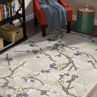 Tham Beige/Taupe/Gold Indoor/Outdoor Area Rug