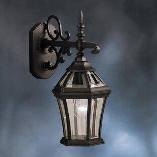 Astoria Grand Connan 1-Light Outdoor Wall Lantern