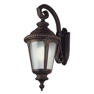 Best Reviews Wilkerson 1-Light Outdoor Wall Lantern By Astoria Grand