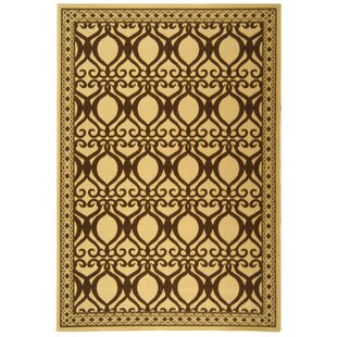 Short Natural/Brown Indoor/Outdoor Area Rug