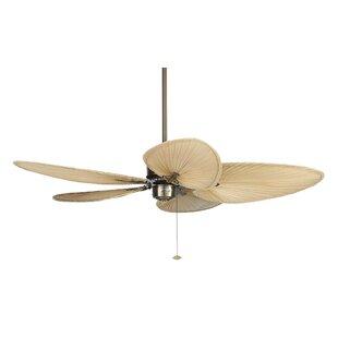 52 Islander 5 Blade Ceiling Fan by Fanimation