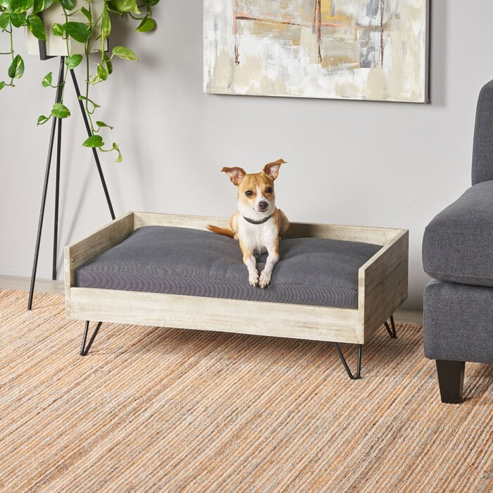Amazing Kaylor Mid Century Modern Dog Sofa Gmtry Best Dining Table And Chair Ideas Images Gmtryco