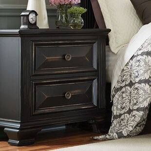 Darby Home Co Petronella 2 Drawer Nightstand
