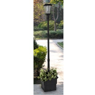 Darby Home Co Wharton Solar Lamp 1-Light LED 83.46