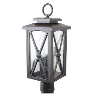 Rogue 1-Light Lantern Head by Alcott Hill