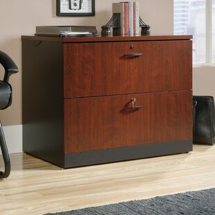 Castalia Lateral File 2-Drawer Lateral Filing Cabinet