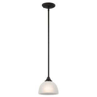 Darby Home Co Gallimore 1-Light Dome Pendant