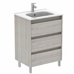 Gravette 24 Wall-Mounted Single Bathroom Vanity Set by Orren Ellis