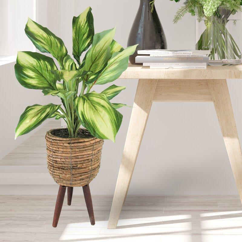 Bayou Breeze 22 Artificial Foliage Plant In Basket Reviews Wayfair