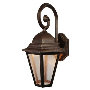 Best Flannigan 1-Light Outdoor Wall Lantern By Charlton Home
