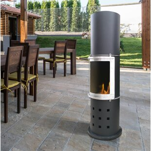 Wynnewood Metal Bioethanol Gas Outdoor Fireplace By Sol 72 Outdoor