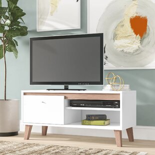 Ayden TV Stand For TVs Up To 60