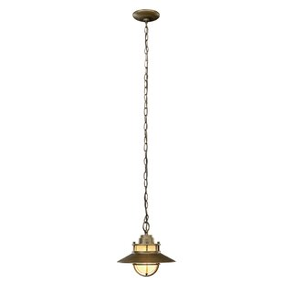 Liam 1-Light Outdoor Pendant