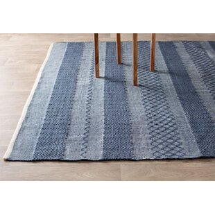 Indira Hand Woven Blue Indoor Outdoor Area Rug