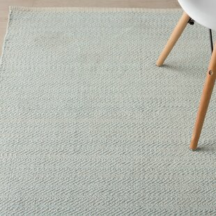 Herringbone Hand Woven Sky Blue Area Rug By Dash And Albert Rugs
