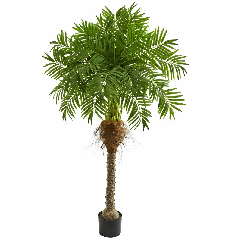 Bay Isle Home 58 Artificial Palm Tree In Planter Reviews Wayfair