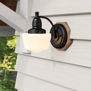 Charlton Home Michaels 1-Light Outdoor Sconce