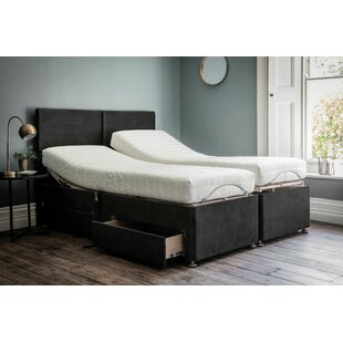 Whisenhunt Small Double Divan Base By 17 Stories