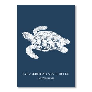 Sea Turtle Sea Graphic Art