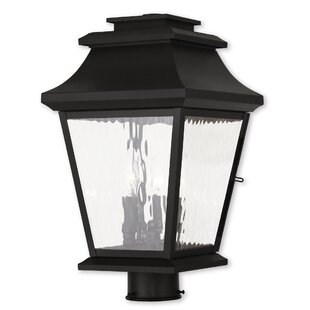 Best Price Campfield 3-Light Lantern Head By Darby Home Co
