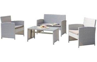 Rietta 4 Piece Sofa Set with Cushions