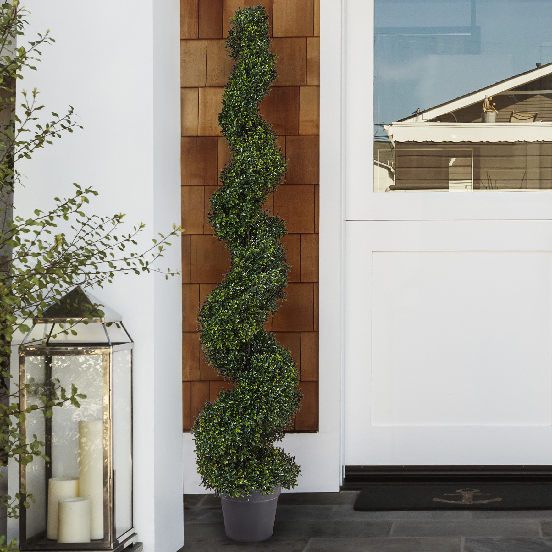 Pure Garden Spiral Boxwood Topiary In Planter Reviews Wayfair
