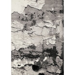 Check Prices Meridian Rock Face Texture Grey Area Rug ByNovelle Home
