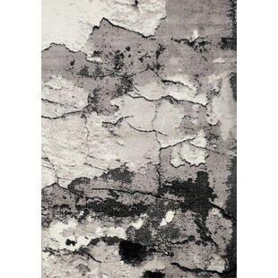 Meridian Rock Face Texture Grey Area Rug ByNovelle Home