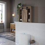Briarhill 18.15 W x 20.35 H x 6.1 D Wall Mounted Bathroom Cabinet by Gracie Oaks