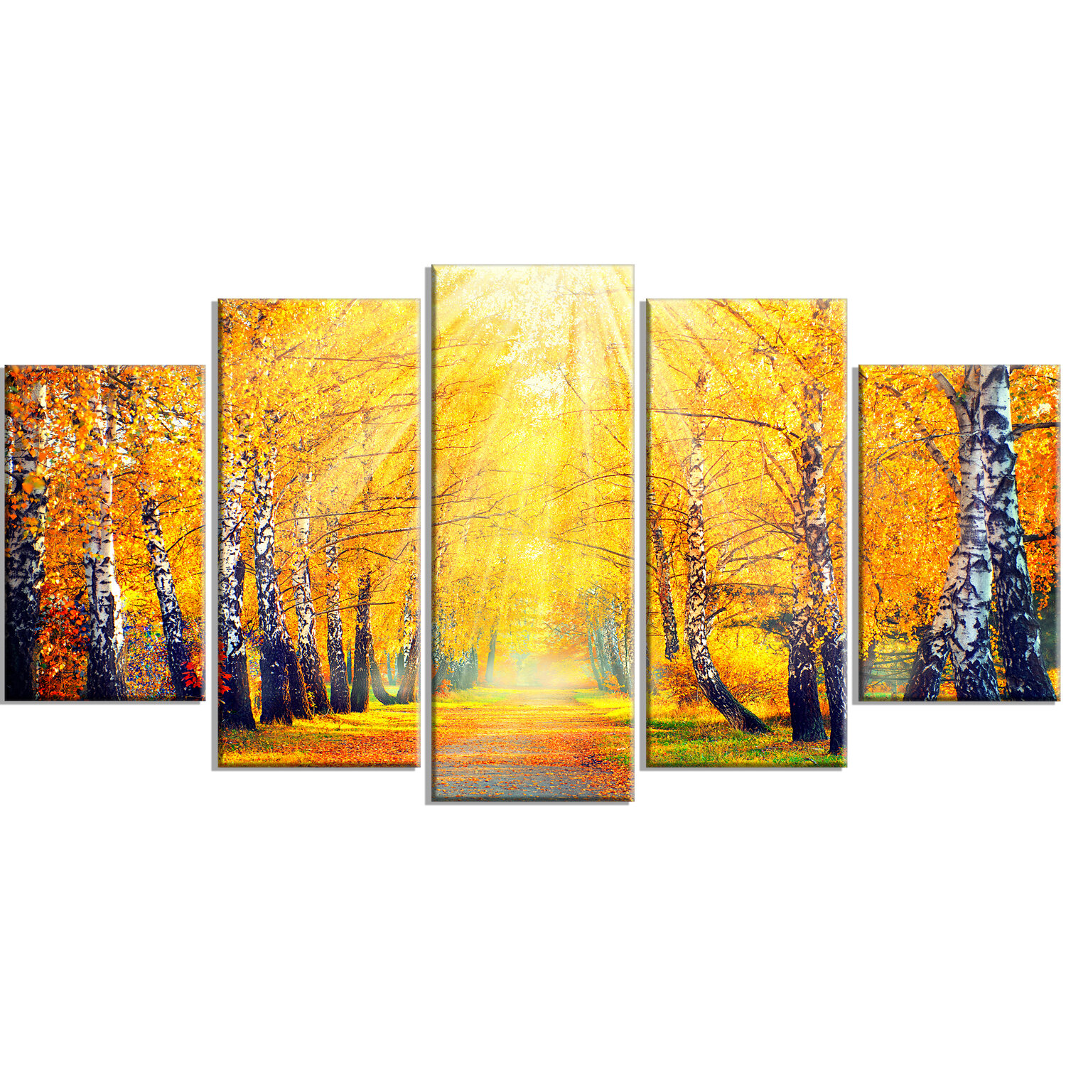 Designart Yellow Autumn Trees In Sunray 5 Piece Photographic Print On Wrapped Canvas Set Wayfair